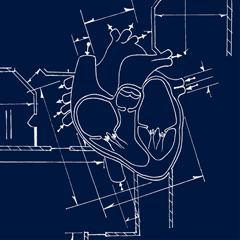 heart blueprint